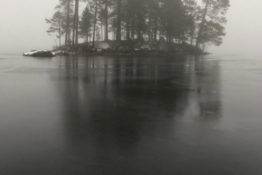 Foggy island, skating