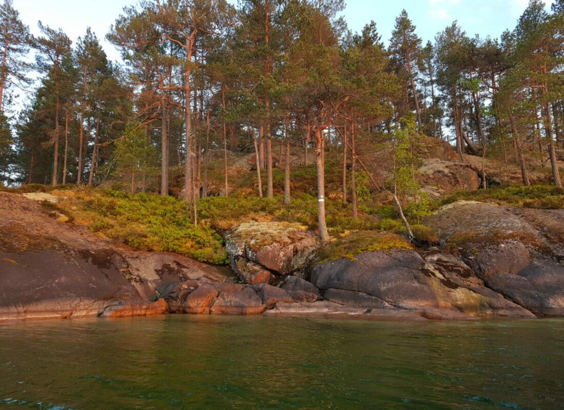 Nature Reserve Råå Uddar