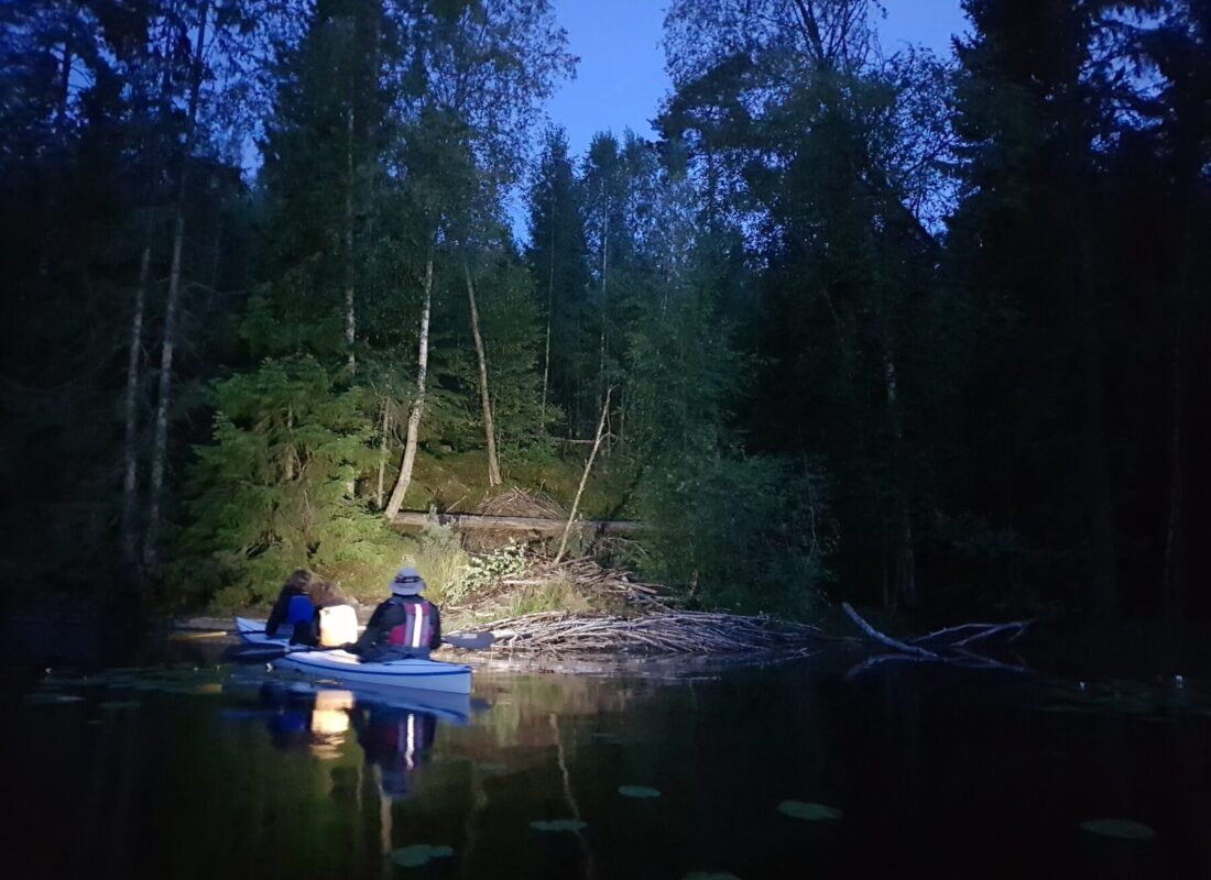 Silent search for beavers in their habitat
