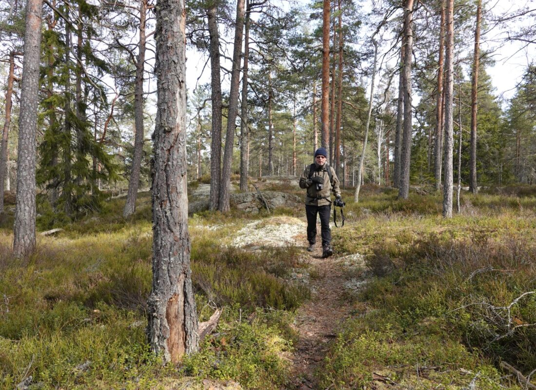 11 km hiking trail in an unspoiled nature in Dalsland west Sweden
